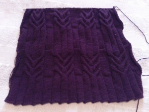 IMG_20120102_151104-300x225 cachemire dans tricot