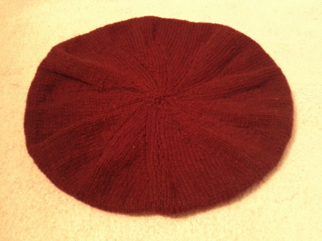 IMG_20120130_1453401-1024x768 dans tricot